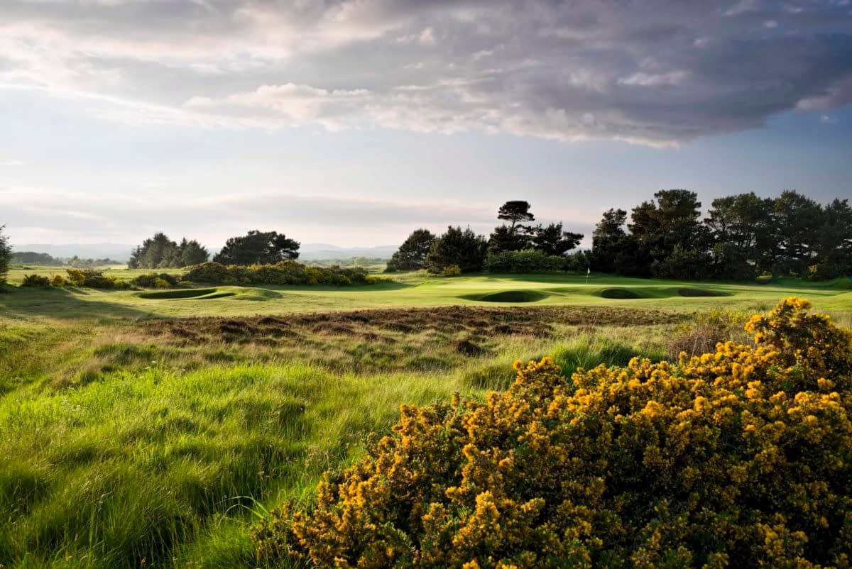 The Irvine Golf Club